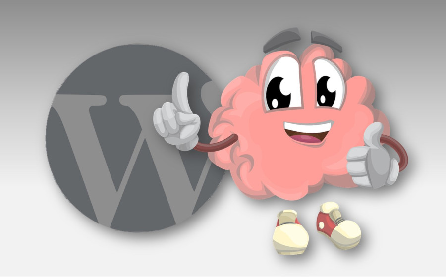 WordPress, undervisning og support